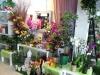 Floristeria Roselles i Roses Foto 3